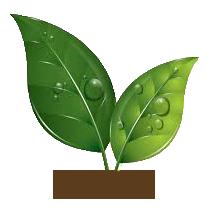 טבעי ללא טיפולים